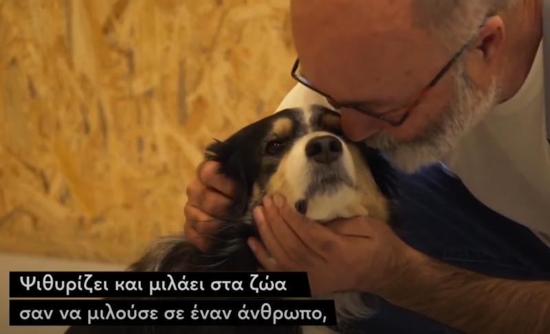 Ο Έλληνας κτηνίατρος που θεραπεύει σκύλους και γάτες εφαρμόζοντας ομοιοπαθητική